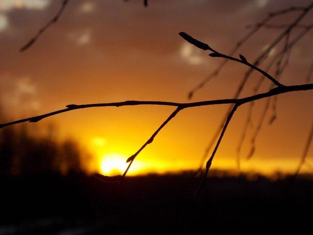 Догорающий закат.