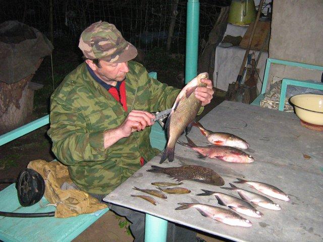 Готовлю рыбу на ужин. Волга.2008