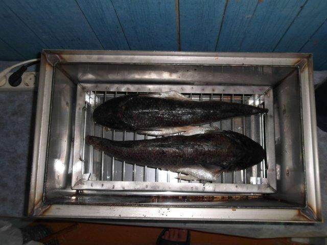 море 2012 051