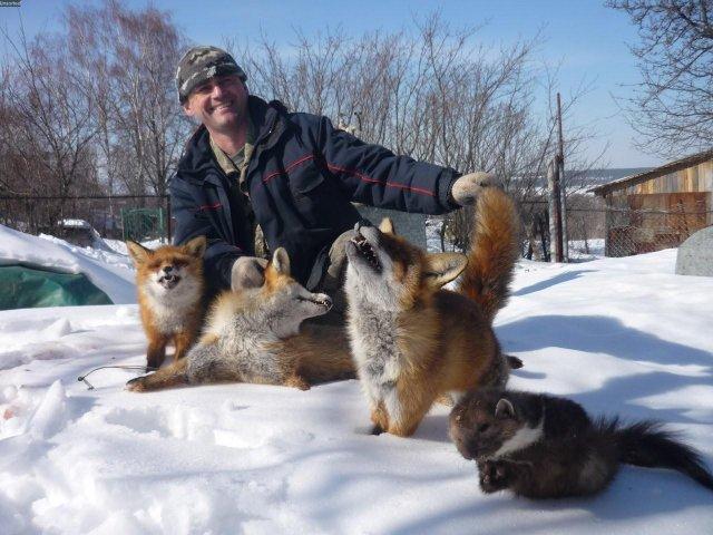 домашние животные.jpg