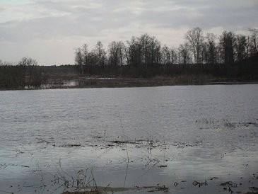 Место охоты,Талдомский район река Вьюлка.