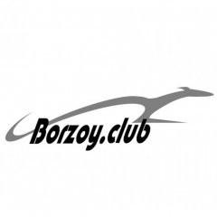 borzinru