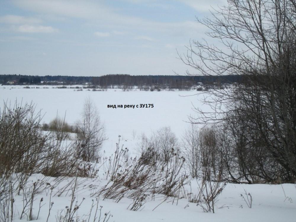 спуск к реке Волга с ЗУ 175 2.jpg
