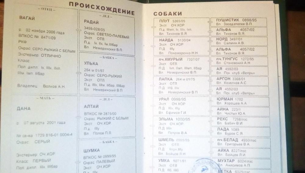 паспорт Волжан.jpg
