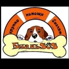 Beaglesos