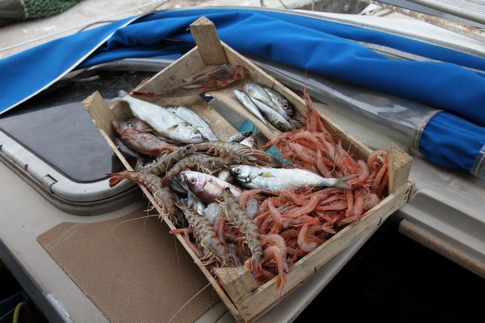 морепродукты.jpg