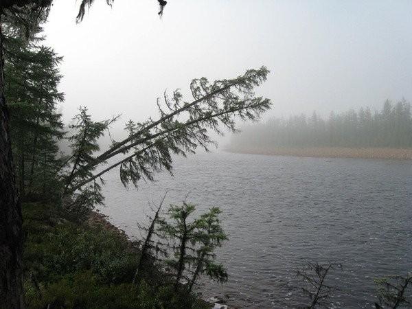 Очень холодный туман