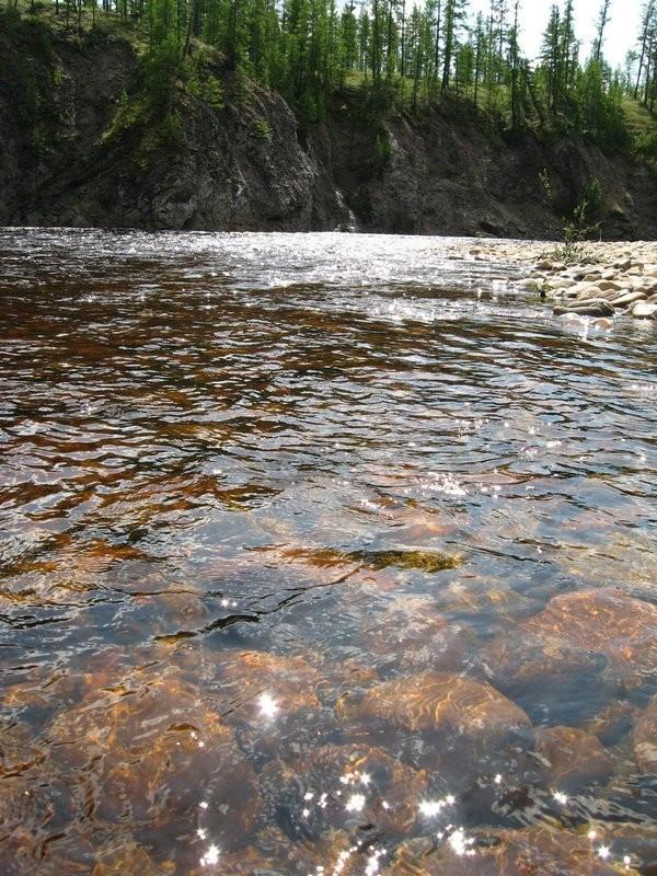 Паводок прошел и вода просветлела.