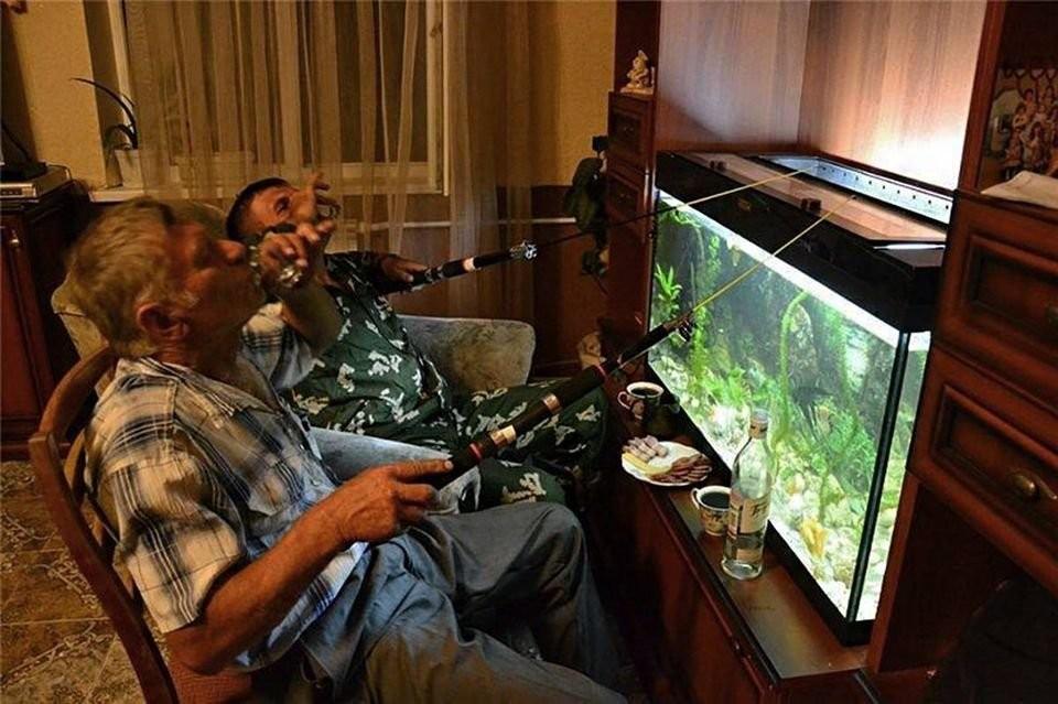 примеру, смешные картинки про аквариумы доступных