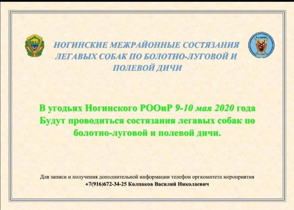 Screenshot_20200129_160617.jpg