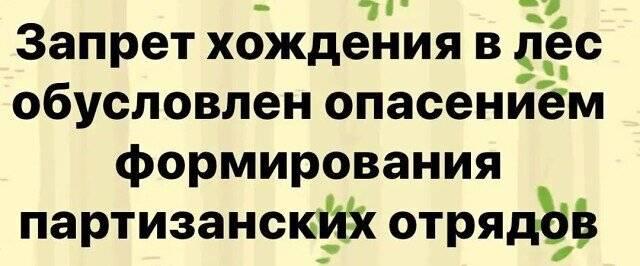 1100959177_i(11).jpg.9cd6f58d56f2b094b176672e4e4e4593.jpg