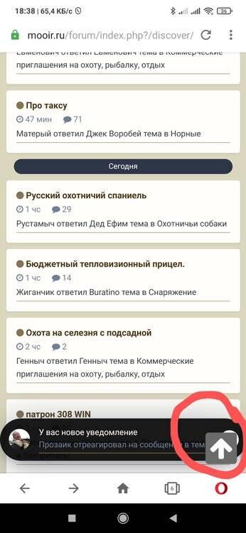 1515596796_Screenshot_2021-03-01-18-38-11-218_com.opera.browser2.thumb.jpg.7516a858a70a5fedc1273019366ace01.jpg